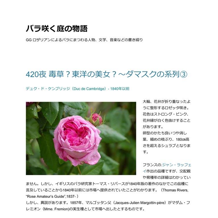デュク・ド・ケンブリッジ(Duc de Cambridge)- 1840年以前 大輪、花弁が折り重なったように整形するロゼッタ咲き。  花色はストロング・ピンク、花弁縁が白く色抜けすることがあります。  卵型のかたち良いつや消し葉、細めの枝ぶり、180㎝高さを超えるシュラブとなります。 フランスの.ジャン・ラッフェイ作出の品種ですが、交配親や育種年の詳細はわかっていません。しかし、イギリスのバラ研究家トーマス・リバースが1840年版の著作のなかでこの品種に言及していることから1840年以前には市場へ提供されていたことがわかります。