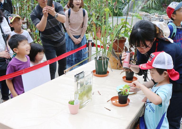 Gadenet(ガデネット)2016年7月5日~9月10日『びっくり!虫を食べる植物展』咲くやこの花館