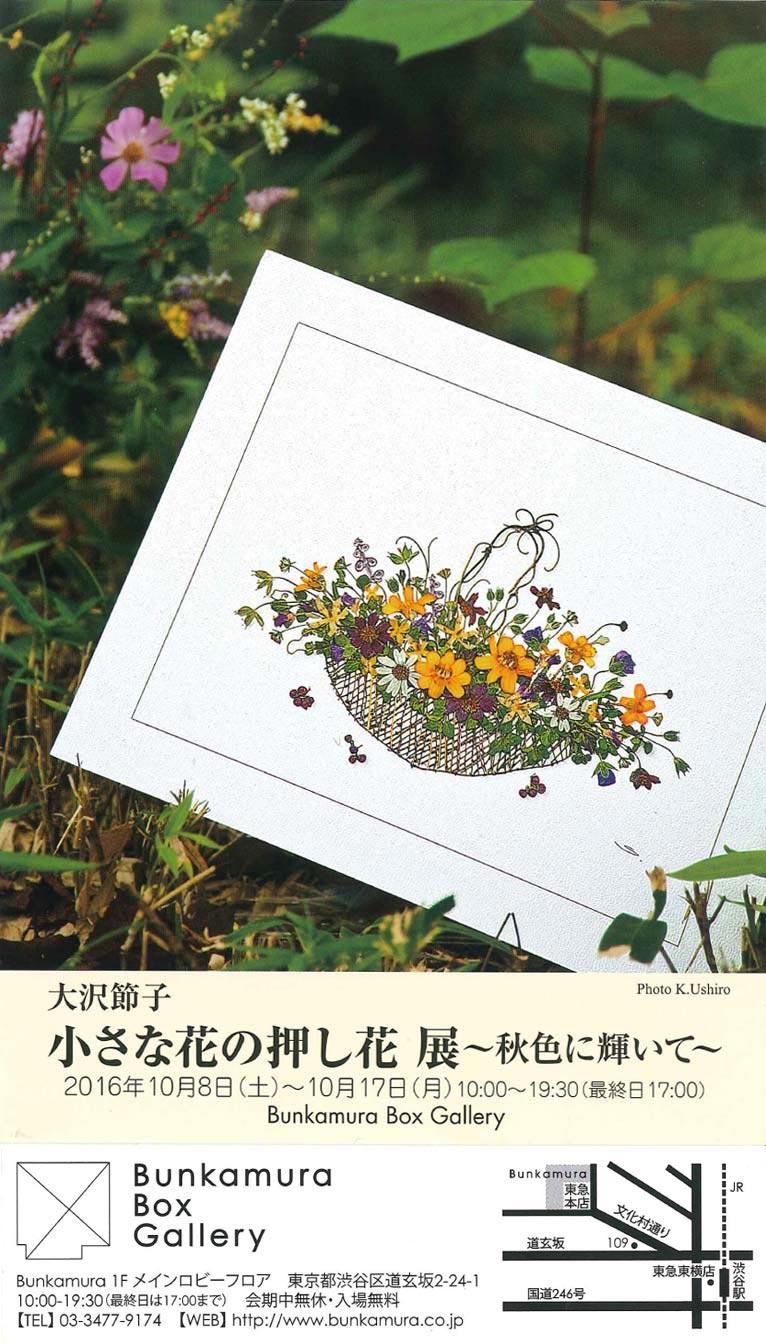 Gadenet(ガデネット)大沢節子 小さな花の押し花 展 ~秋色に輝いて~