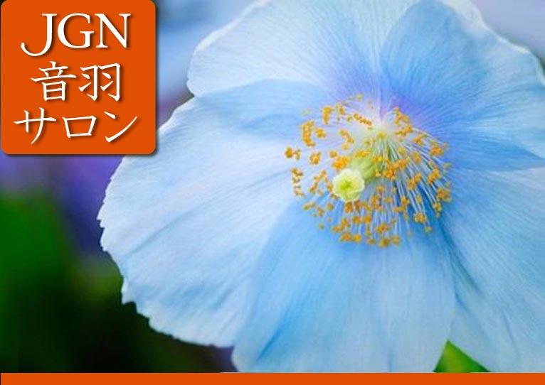 Gadenet(ガデネット)2016年10月5日第4回JGN音羽サロン『植物マニアの東チベット紀行』講師:JGN理事 長岡 求氏