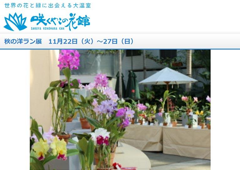2016年11月22日~27日『秋の洋ラン展』咲くやこの花館
