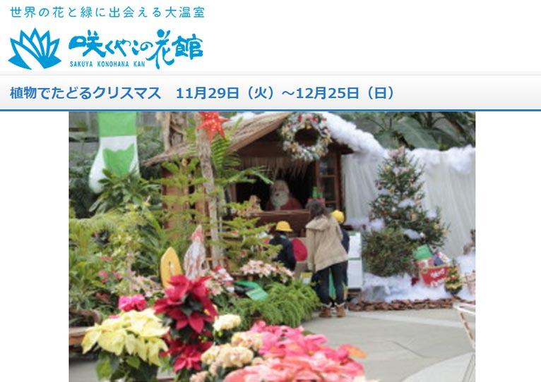 11月29日~12月25日『植物でたどるクリスマス』咲くやこの花館