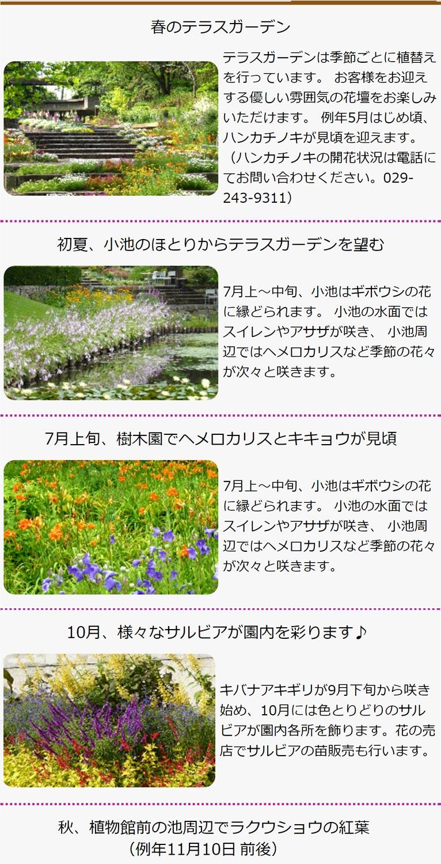 水戸市植物公園紹介ページ