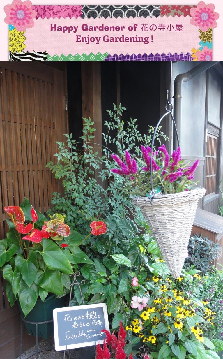 花の寺小屋~秋の装い~