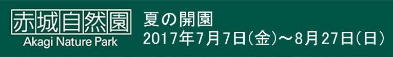 2017年7月7日~8月27日赤城自然園 夏の開園