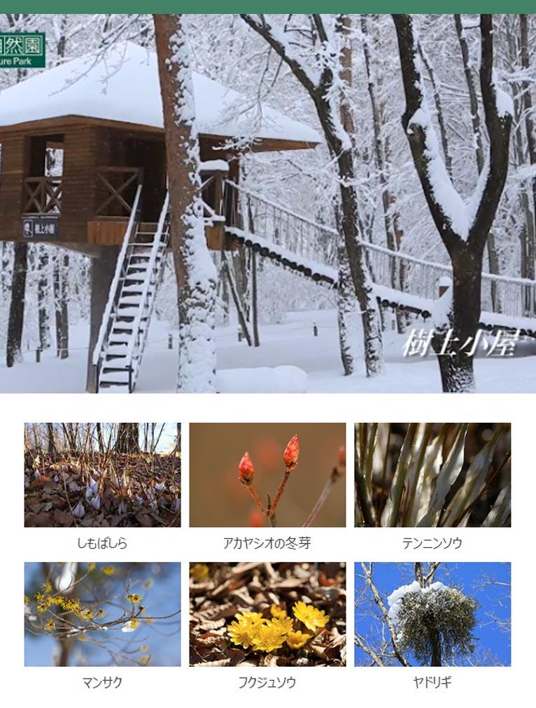 赤城自然園の冬