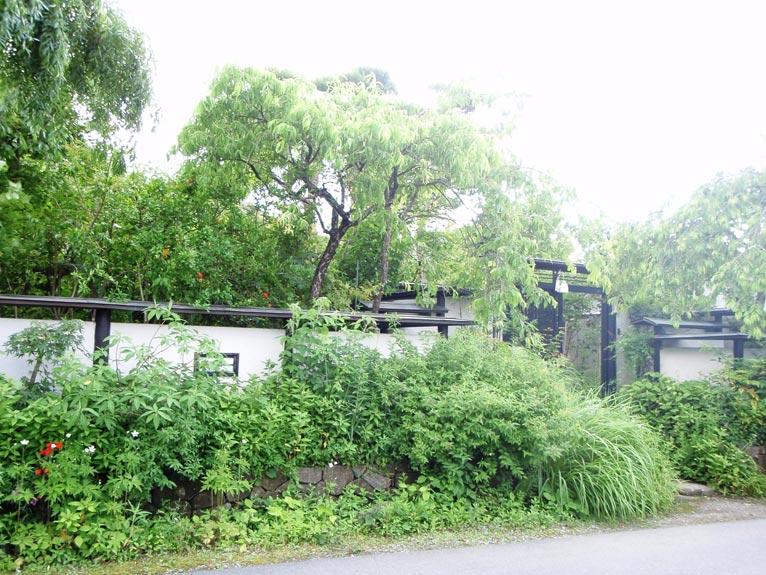 2017年3月16日信州の野の花に魅せられて~唐木さちの花語り~池袋コミュニティ・カレッジ