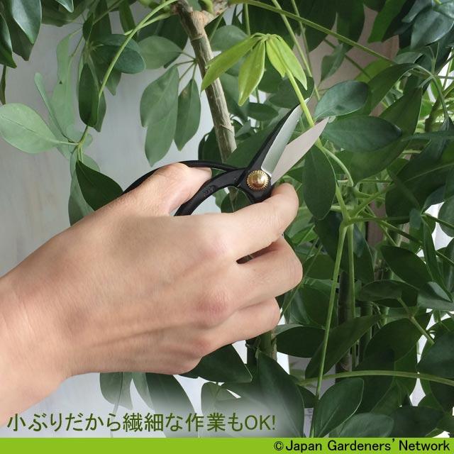 【JGN WEB SHOP】外山刃物製 ミニ大久保鋏(おおくぼばさみ・ケース付)2色有