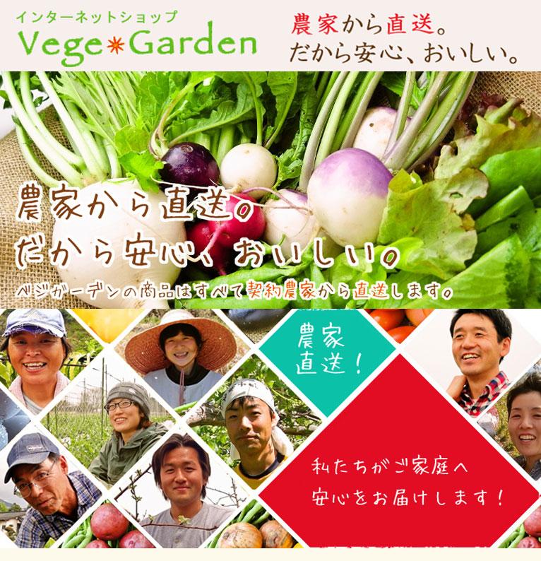 ベジガーデン Vege Garden 朝日工業(株)
