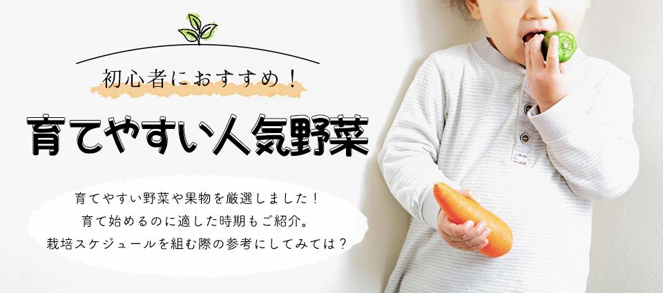 初心者におすすめ!育てやすい人気野菜 ベジガーデン Vege Garden 朝日工業(株)