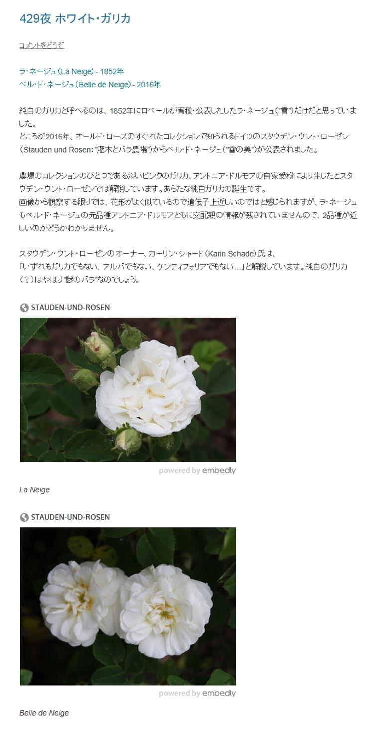 """田中敏夫- ggrosarian「バラ咲く庭の物語」より  純白のガリカと呼べるのは、1852年にロベールが育種・公表したしたラ・ネージュ(""""雪"""")だけだと思っていました。 ところが2016年、オールド・ローズのすぐれたコレクションで知られるドイツのスタウデン・ウント・ローゼン(Stauden und Rosen:""""灌木とバラ農場"""")からベル・ド・ネージュ(""""雪の美"""")が公表されました。  農場のコレクションのひとつである淡いピンクのガリカ、アントニア・ドルモアの自家受粉により生じたとスタウデン・ウント・ローゼンでは解説しています。あらたな純白ガリカの誕生です。  画像から観察する限りでは、花形がよく似ているので遺伝子上近しいのではと感じられますが、ラ・ネージュもベル・ド・ネージュの元品種アントニア・ドルモアともに交配親の情報が残されていませんので、2品種が近しいのかどうかわかりません。  スタウデン・ウント・ローゼンのオーナー、カーリン・シャード(Karin Schade)氏は、  「いずれもガリカでもない、アルバでもない、ケンティフォリアでもない…」と解説しています。純白のガリカ(?)はやはり""""謎のバラ""""なのでしょう。"""