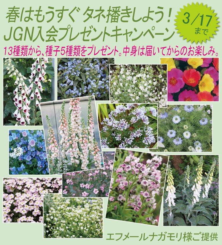 春はもうすぐ タネ播きしよう!入会プレゼントキャンペーン(期間限定2017年3月17日まで)