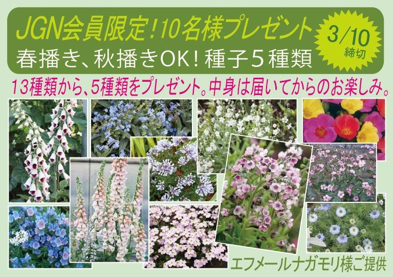 2017年3月15日締切JGN会員プレゼント!春播き、秋播きどちらもOK!13種類の中から、種子5種類を10名様にエフメールナガモリ様ご提供