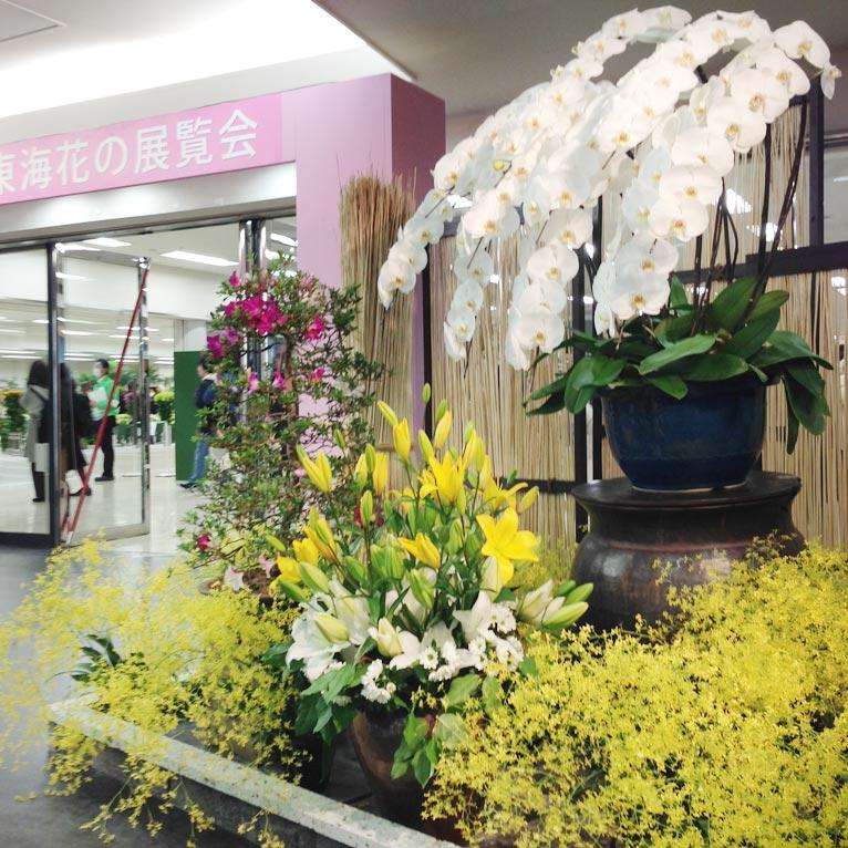 サンシャインシティで開催の第65回関東東海花の展覧会に行ってきました!