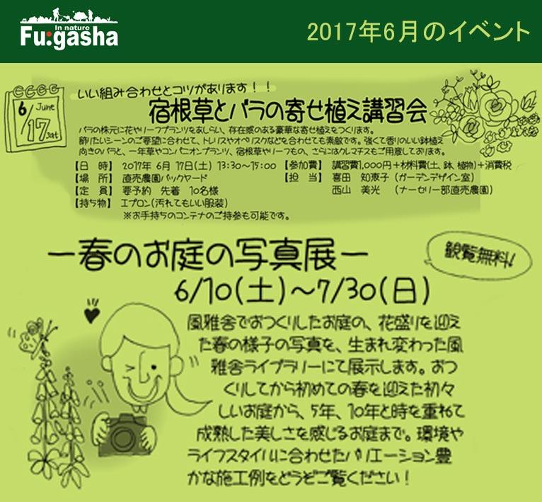 風雅舎2017年6月のイベント6月10日~7月30日 ~春のお庭の写真展~ 6月17日 宿根草とバラの寄せ植え講習会