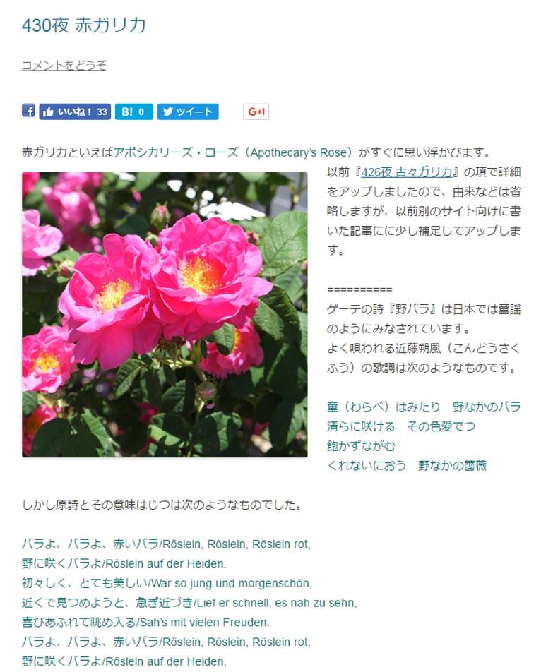 田中敏夫- ggrosarian「バラ咲く庭の物語」より  赤ガリカといえばアポシカリーズ・ローズ(Apothecary's Rose)がすぐに思い浮かびます。 Apothecarys Rose以前『426夜 古々ガリカ』の項で詳細をアップしましたので、由来などは省略しますが、以前別のサイト向けに書いた記事にに少し補足してアップします。  ゲーテの詩『野バラ』は日本では童謡のようにみなされています。 よく唄われる近藤朔風(こんどうさくふう)の歌詞は次のようなものです。  童(わらべ)はみたり 野なかのバラ 清らに咲ける その色愛でつ 飽かずながむ くれないにおう 野なかの薔薇  しかし原詩とその意味はじつは次のようなものでした。  バラよ、バラよ、赤いバラ/Röslein, Röslein, Röslein rot, 野に咲くバラよ/Röslein auf der Heiden. 初々しく、とても美しい/War so jung und morgenschön, 近くで見つめようと、急ぎ近づき/Lief er schnell, es nah zu sehn, 喜びあふれて眺め入る/Sah's mit vielen Freuden. バラよ、バラよ、赤いバラ/Röslein, Röslein, Röslein rot, 野に咲くバラよ/Röslein auf der Heiden.