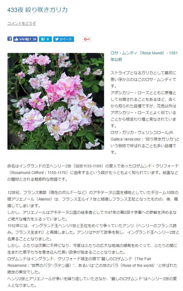 """Rosa Mundiロサ・ムンディ(Rosa Mundi)- 1581年以前  ストライプとなるガリカとして最初に思い浮かぶのはこのロサ・ムンディです。 アポシカリー・ローズとともに原種として分類されることもあるほど、古くから知られた品種ですが、花色以外はアポシカリー・ローズとよく似ていることから枝変わり種と見なされています。 ロサ・ガリカ・ヴェリシコロール(R. Gallica Versicolor:""""絞り咲きガリカ"""")という別称で呼ばれることも多い品種です。  命名はイングランドの王ヘンリー2世(治世1133-1189)の愛人であったロザムンド・クリフォード(Rosamund Clifford:1150-1176)に由来するという説がもっともよく知られています。絵画などの題材とされる魅惑的な物語です。  12世紀、フランス南部(現在のボルドーなど)のアキテーヌ公国を領地としていたギヨーム10世の娘アリエノール(Alienor)は、フランス王ルイ7世と結婚しフランス王妃となったものの、後、離婚してしまいます。 しかし、アリエノールはアキテーヌ公国の継承者として1147年の第2回十字軍への参戦を決めるなど絶大な権力をふるっていました。 1152年には、イングランド王ヘンリ1世と王位をめぐり争っていたアンリ(ヘンリーのフランス読み。フランス生まれ)と再婚しました。アンリはやがて政争を制し、イングランド王ヘンリー2世と名乗ることとなりました。 しかし、ふたりは次第に不仲になり、今度はふたりの広大な地域の領有をめぐって、ふたりの間に生まれた息子たちを巻き込んだ長い政争が始まることとなりました。 ロザムンドはイングランド、クリフォード城主の娘で""""麗しのロザムンド(The Fair Rosamond:""""世界のバラ""""-ラテン語)""""、あるいは""""この世のバラ(Rose of the world)""""と呼ばれた絶世の美女でした。 ヘンリ2世とアリエノールが争いを繰り返していたさなか、""""麗しのロザムンド""""はヘンリー2世の愛人となりました。"""