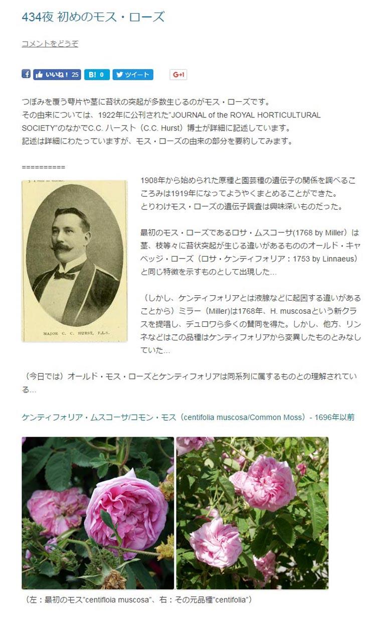 """田中敏夫- ggrosarian「バラ咲く庭の物語」より  つぼみを覆う萼片や茎に苔状の突起が多数生じるのがモス・ローズです。 その由来については、1922年に公刊された""""JOURNAL of the ROYAL HORTICULTURAL SOCIETY""""のなかでC.C. ハースト(C.C. Hurst)博士が詳細に記述しています。 記述は詳細にわたっていますが、モス・ローズの由来の部分を要約してみます。  Dr. C.C. Hurst1908年から始められた原種と園芸種の遺伝子の関係を調べるこころみは1919年になってようやくまとめることができた。 とりわけモス・ローズの遺伝子調査は興味深いものだった。  最初のモス・ローズであるロサ・ムスコーサ(1768 by Miller)は茎、枝等々に苔状突起が生じる違いがあるもののオールド・キャベッジ・ローズ(ロサ・ケンティフォリア:1753 by Linnaeus)と同じ特徴を示すものとして出現した…  (しかし、ケンティフォリアとは液腺などに起因する違いがあることから)ミラー(Miller)は1768年、H. muscosaという新クラスを提唱し、デュロワら多くの賛同を得た。しかし、他方、リンネなどはこの品種はケンティフォリアから変異したものとみなしていた…  (今日では)オールド・モス・ローズとケンティフォリアは同系列に属するものとの理解されている…"""