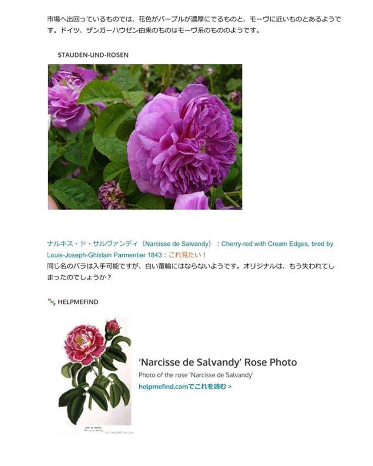 植物百般 インタビュー「来た道、行く道、バラの道?」JGN創立メンバー 田中敏夫さんのブログ「バラ咲く庭の物語」