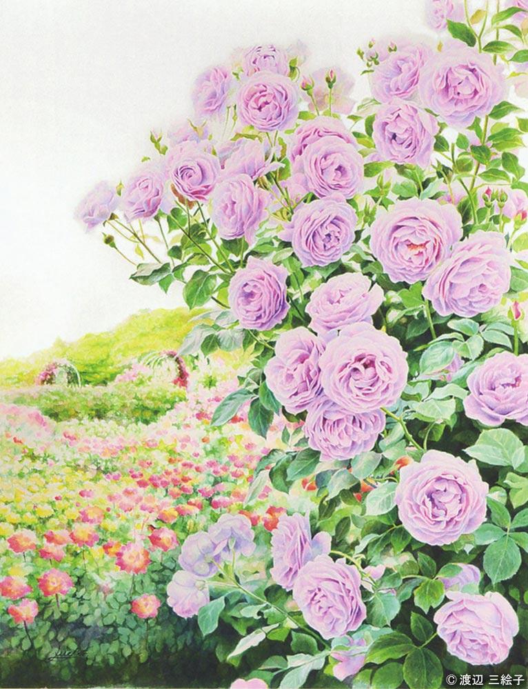 「バラ『しのぶれど』」花の水彩画 渡辺 三絵子