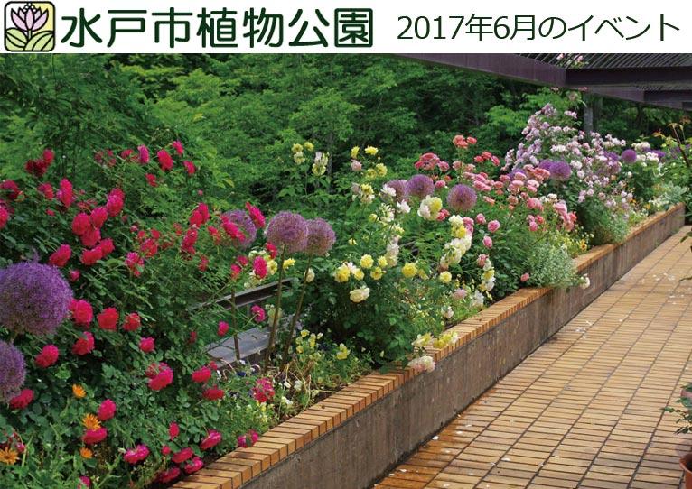 水戸市植物公園 2017年6月のイベント