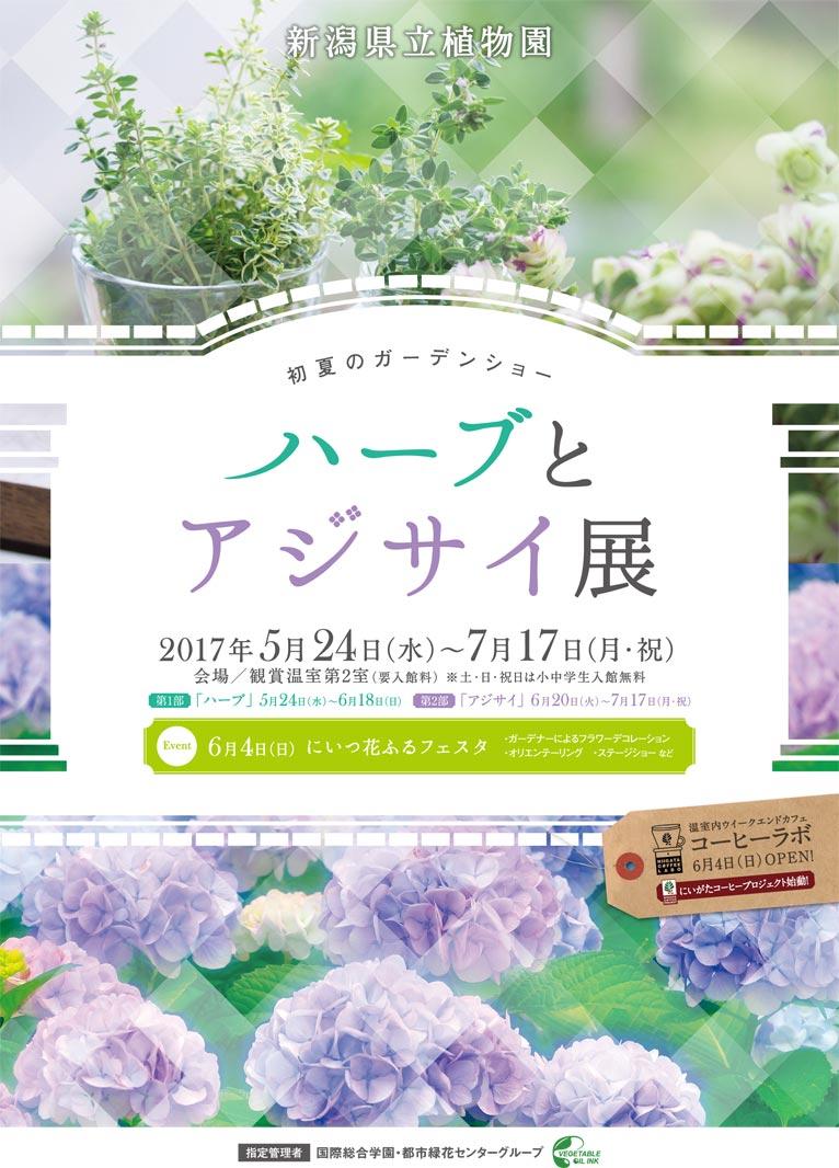2017年5月24日~7月17日 初夏のガーデンショー ハーブとアジサイ展 新潟県立植物園