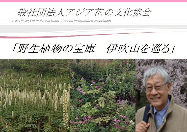 2017年7月8日 AFCA第3回セミナー 花の文化史紀行 滋賀編 大場秀章先生と行く「野生植物の宝庫 伊吹山を巡る」