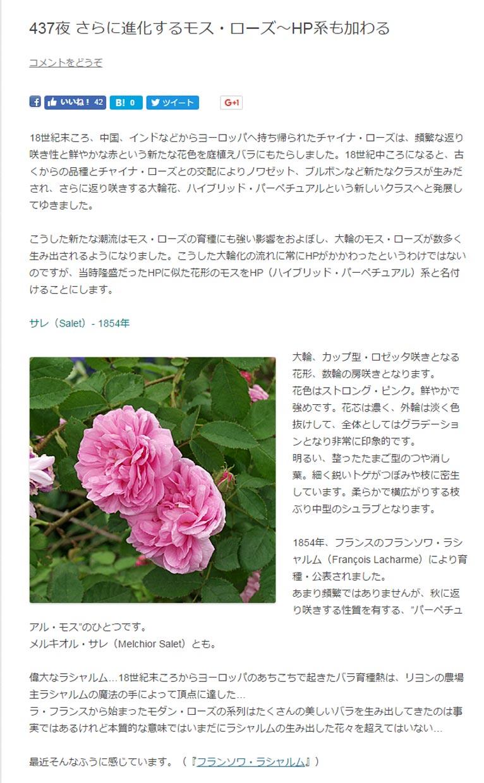 """田中敏夫- ggrosarian「バラ咲く庭の物語」より  18世紀末ころ、中国、インドなどからヨーロッパへ持ち帰られたチャイナ・ローズは、頻繁な返り咲き性と鮮やかな赤という新たな花色を庭植えバラにもたらしました。18世紀中ころになると、古くからの品種とチャイナ・ローズとの交配によりノワゼット、ブルボンなど新たなクラスが生みだされ、さらに返り咲きする大輪花、ハイブリッド・パーペチュアルという新しいクラスへと発展してゆきました。  こうした新たな潮流はモス・ローズの育種にも強い影響をおよぼし、大輪のモス・ローズが数多く生み出されるようになりました。こうした大輪化の流れに常にHPがかかわったというわけではないのですが、当時隆盛だったHPに似た花形のモスをHP(ハイブリッド・パーペチュアル)系と名付けることにします。  サレ(Salet)- 1854年 大輪、カップ型・ロゼッタ咲きとなる花形、数輪の房咲きとなります。 花色はストロング・ピンク。鮮やかで強めです。花芯は濃く、外輪は淡く色抜けして、全体としてはグラデーションとなり非常に印象的です。 明るい、整ったたまご型のつや消し葉。細く鋭いトゲがつぼみや枝に密生しています。柔らかで横広がりする枝ぶり中型のシュラブとなります。  1854年、フランスのフランソワ・ラシャルム(François Lacharme)により育種・公表されました。 あまり頻繁ではありませんが、秋に返り咲きする性質を有する、""""パーペチュアル・モス""""のひとつです。 メルキオル・サレ(Melchior Salet)とも。"""
