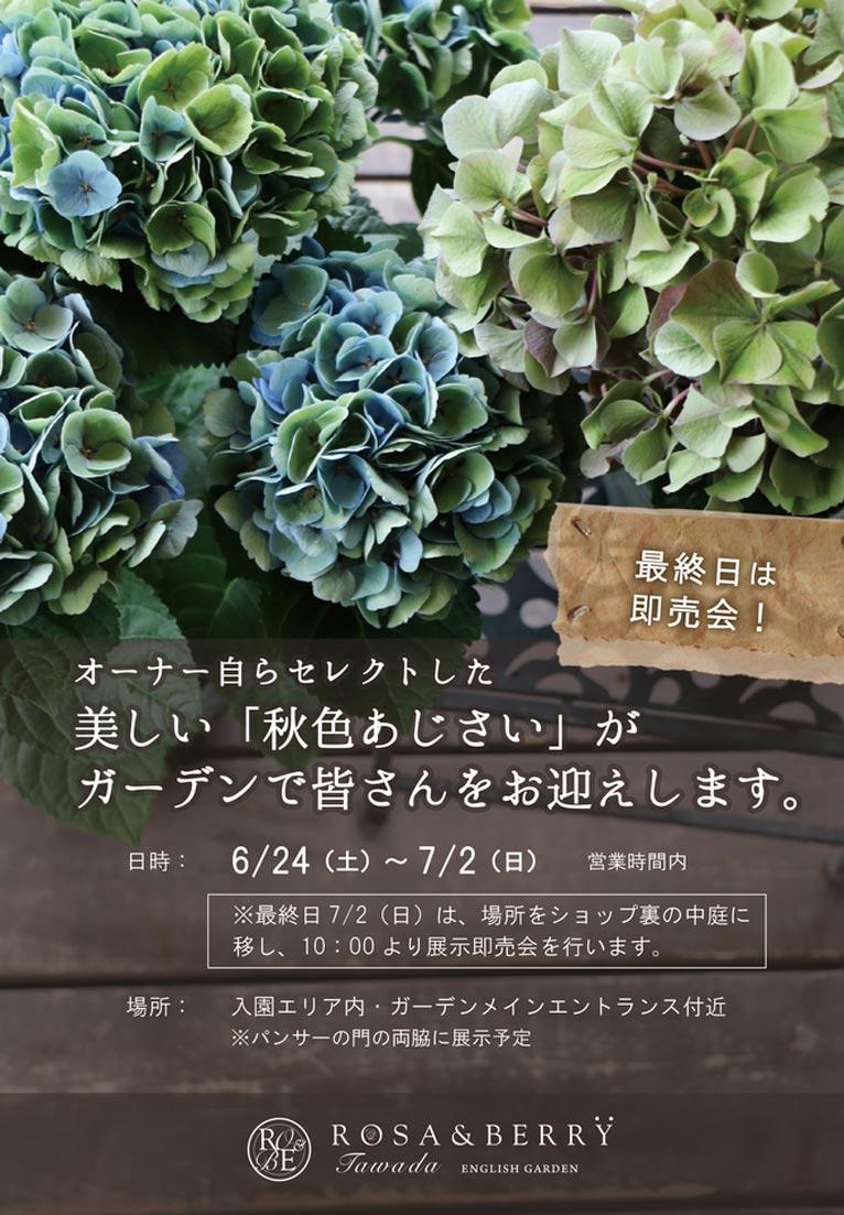 2017年6月24日~7月2日 オーナー自らセレクトした、美しい「秋色あじさい」が ガーデンで皆さんをお迎えします。 ROSE & BERRY Tawada ローザンベリー多和田