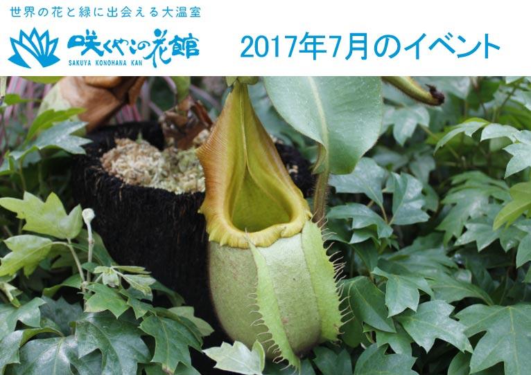 咲くやこの花館 2017年7月のイベント