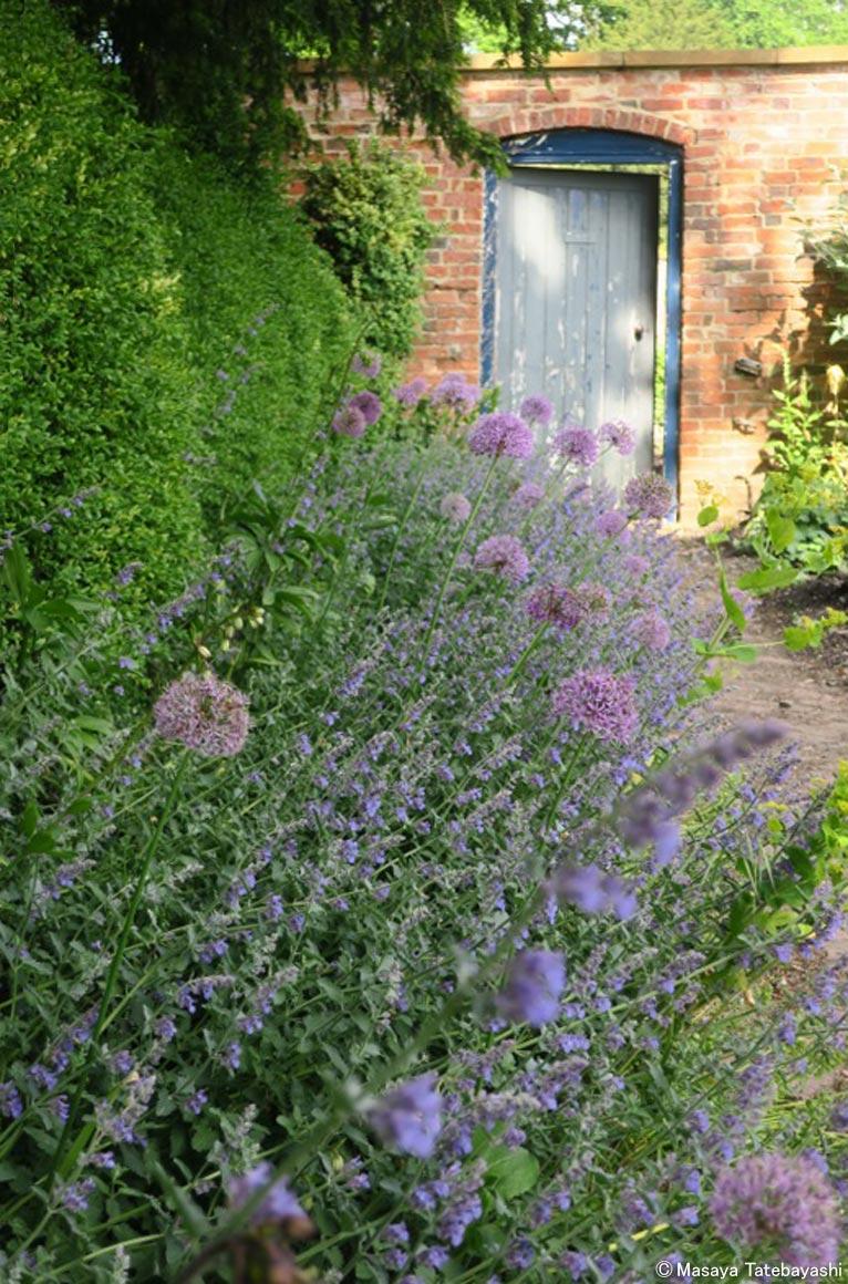 2017年8月27日 JGNキックオフ・セミナー in 関西 英国王立植物園キューガーデンのディプロマを持つ舘林正也さんが語る『人とつながるイングリッシュガーデンの魅力』 咲くやこの花館