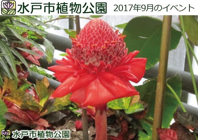 水戸市植物公園 2017年9月のイベント