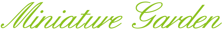 2017年9月16・17日 青山ガーデニングフェア 主催:東京ホームズコレクション 協力:JGN  9月17日要予約「人気の多肉植物でミニチュアガーデンを作ろう!」講師:山口まり氏