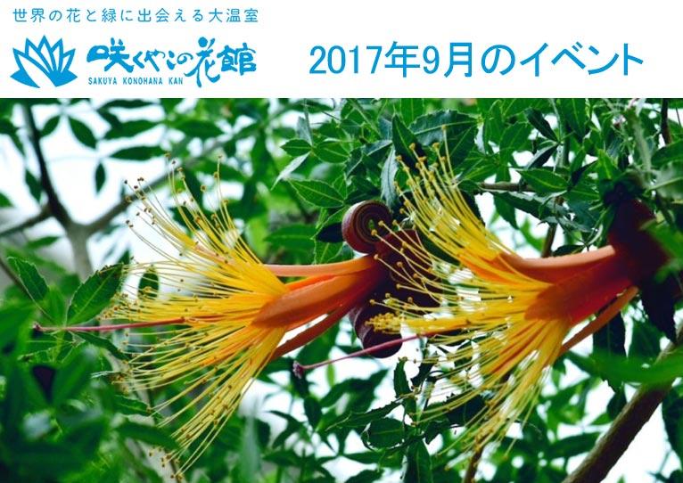 咲くやこの花館 2017年9月のイベント虫を食べる植物展