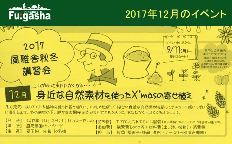 風雅舎2017年12月のイベント 12月2日 身近な自然素材を使ったX'masの寄せ植え