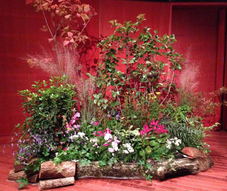 全国都市緑化はちおうじフェア 東エリアサテライト会場 緑を学ぶ3つの講演会 造園家 山本紀久さんの講演を聞きに行ってきました。会場内の装飾
