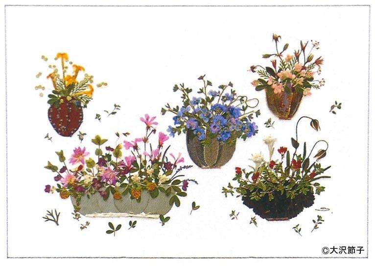 大沢節子「小さな花の押し花」展に行ってきました。