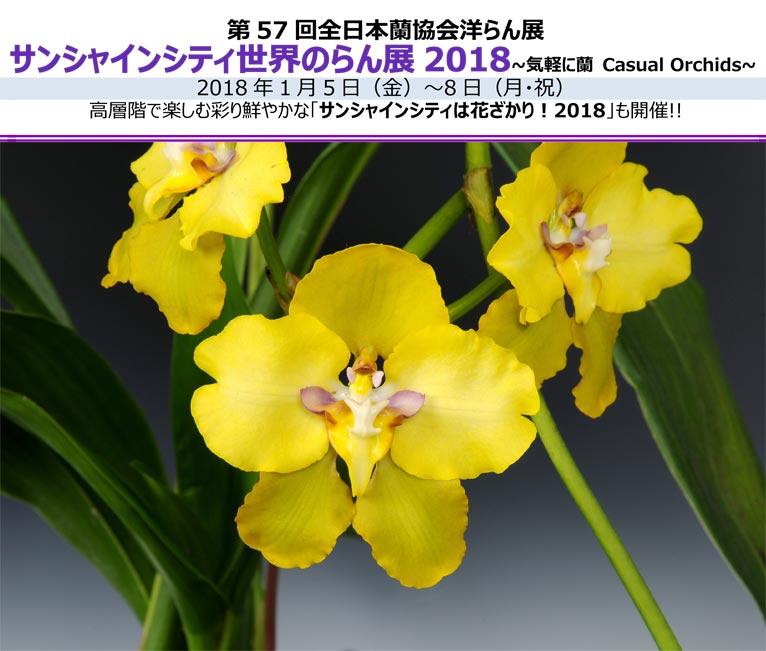 2018年1月5日~8日 第57回全日本蘭協会洋らん展 サンシャインシティ世界のらん展2018 ~気軽に蘭 Casual Orchids~