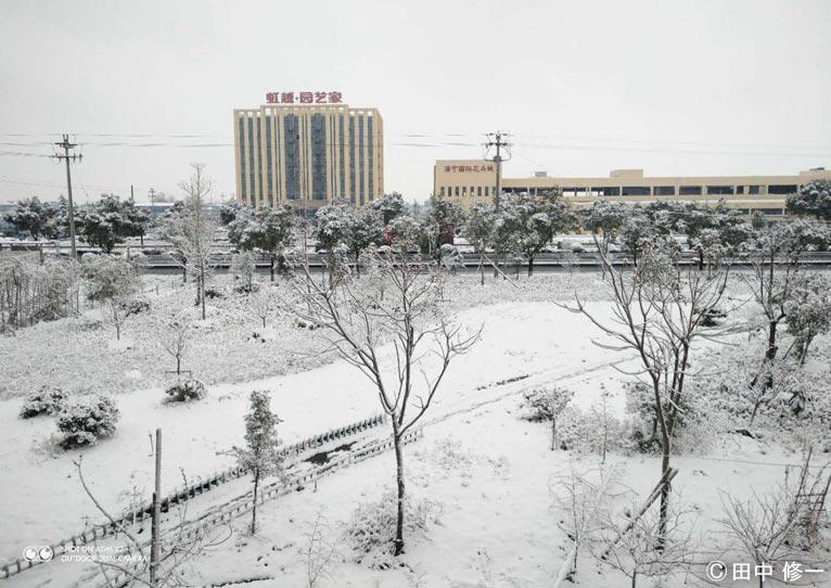 2018年1月 中国杭州市のガーデンセンターも雪景色 ~特集記事でご紹介した現場から~