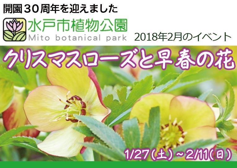水戸市植物公園 2018年2月のイベント