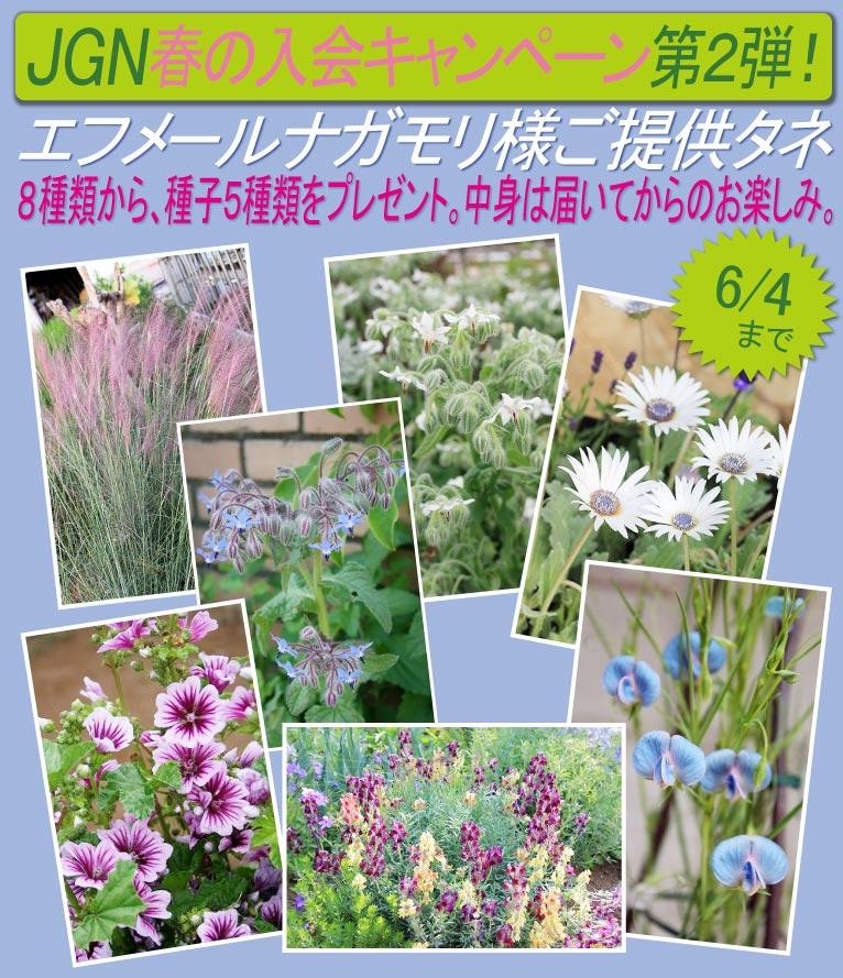 2018年3月19日~6月4日 春のJGN入会キャンペーン第2弾! 春播き、秋播きどちらもOK! 8種類の中から、5種類の種子をプレゼント エフメールナガモリ様ご提供