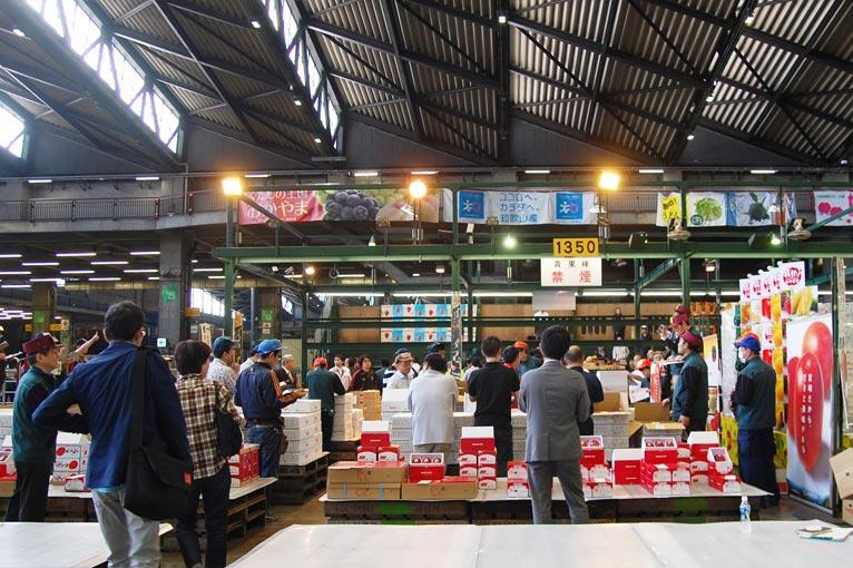 ジャパン・ガーデナーズ・ネットワーク(JGN)プランツ&フーディーズ ワークショップ早起きは三文以上のお得! 美味しく知ろう 野菜のアレコレ日本一の青果市場!大田市場青果部見学を終えてマンゴーのせり