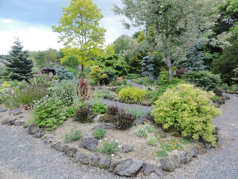 NURSERIES vol.14 ガーデンプランツ工藤 バラエティ豊かな植物が植えられているサンプルガーデン