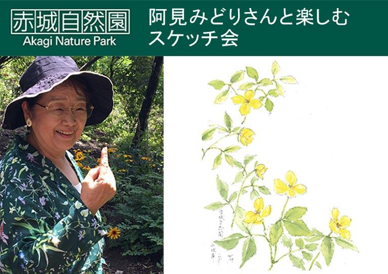 2018年5月16日、8月27日 阿見みどりさんと楽しむスケッチ会 銀の鈴社×赤城自然園