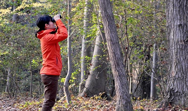 赤城自然園散策プログラム 早朝探鳥ウォーク