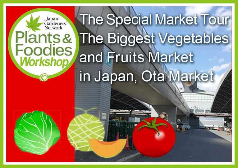 Saturday 2 June 2018 The Special Market Tour The Biggest Vegetables and Fruits Market in Japan, Ota Market