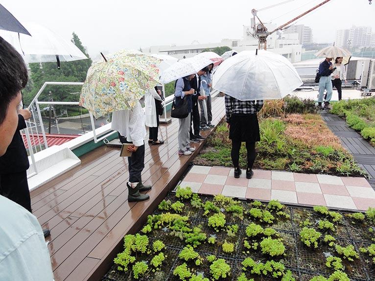 2018年6月20日 JGNスペシャル・ガーデンツアー 田島緑化工事株式会社✕JGNコラボレーションイベント『屋上緑化の今を見学しよう!』屋上緑化のメリットである雨水の一時貯留効果を体感しながら、田島緑化工事さんの社屋屋上を見学。山﨑康夫社長自ら、現場で解説くださった。
