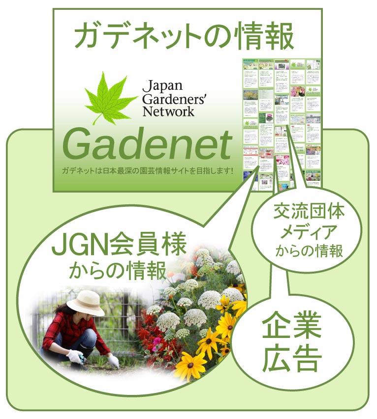 ガデネット(Gadenet)の情報はJGN会員の園芸情報と JGNの交流団体・メディアからの情報、企業からの広告を掲載しています。