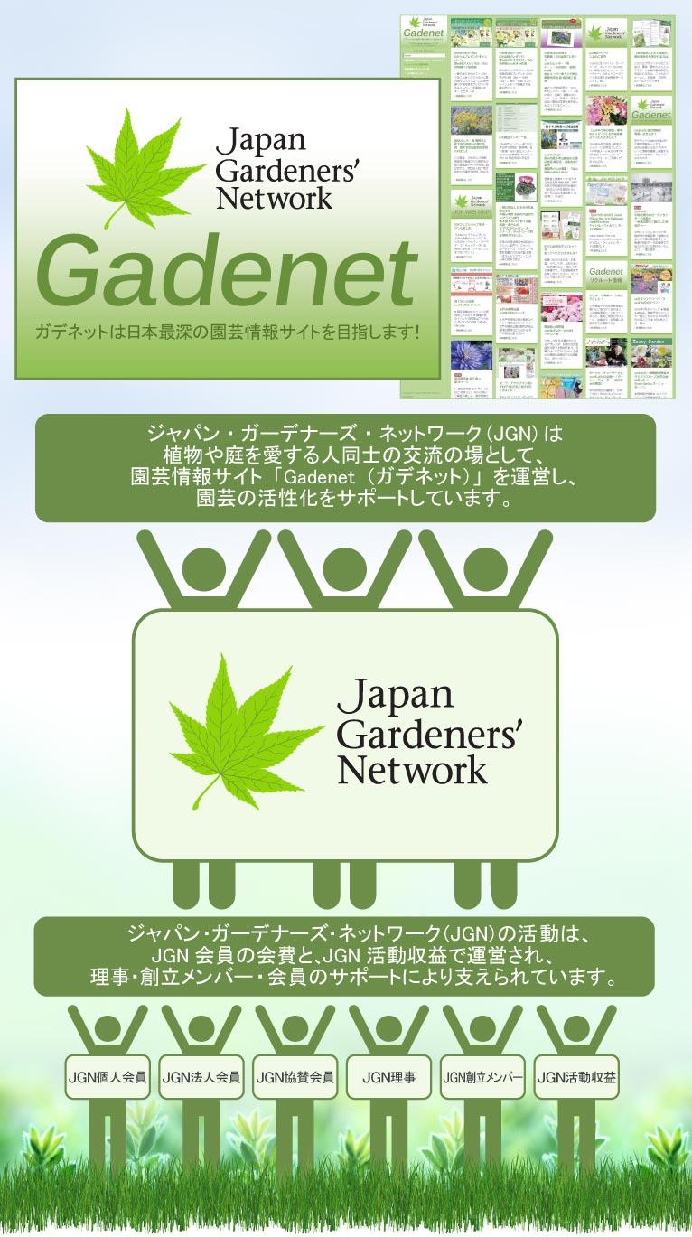 ジャパン・ガーデナーズ・ネットワーク(JGN)は植物や庭を愛する人同士の交流の場として、園芸情報サイト「Gadenet(ガデネット)」を運営し、園芸の活性化をサポートしています。ジャパン・ガーデナーズ・ネットワーク(JGN)の活動は、JGN会員の会費と、JGN活動収益で運営され、理事・創立メンバー・会員のサポートにより支えられています。