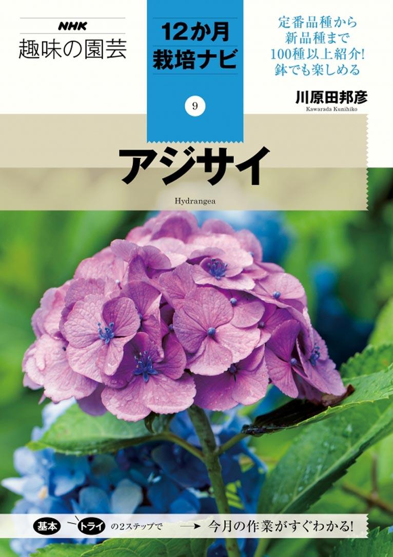 NHK趣味の園芸12か月栽培ナビ(9)アジサイ 川原田 邦彦 著
